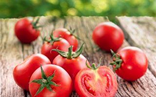 О томате афродита: описание и характеристики сорта, уход и выращивание