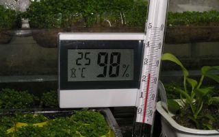 Микроклимат в теплице: температура, оптимальная влажность, влияние ультрафиолета, как уменьшить показатели, фото, видео – тепличные советы