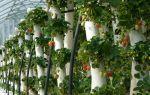 Вертикальная грядка для клубники: как сделать своими руками, технология выращивания вертикальным способом, фото, видео — тепличные советы