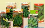Томат красным красно: фото, описание сорта, отзывы, выращивание из семян, пасынкование, видео – тепличные советы