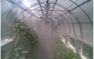 Туманообразователь для теплиц: как сделать систему своими руками, этапы монтажа, фото, видео – тепличные советы