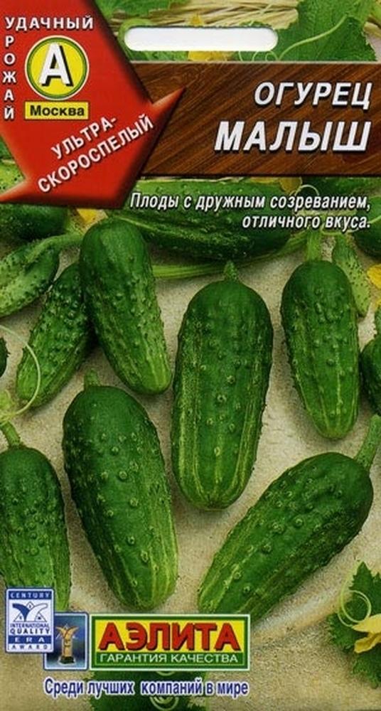 Все о сорте огурцов Малыш: описание, агротехника выращивания и уход