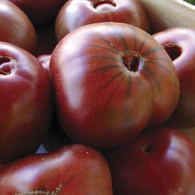 О томате Сахар коричневый: описание и характеристики сорта, посадка и уход