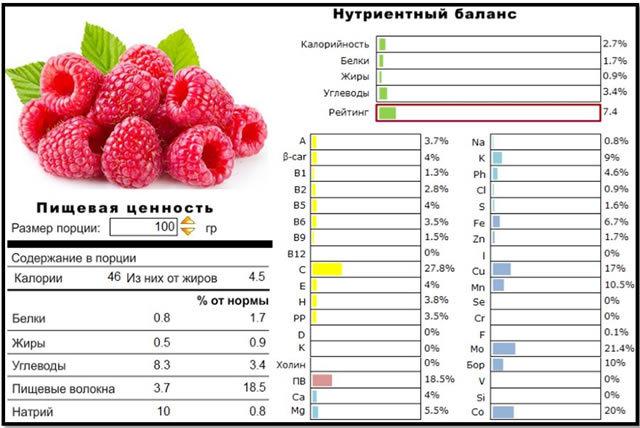 О малине Евразия ремонтантной: описание сорта, особенности по уходу