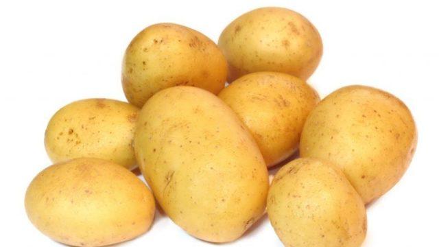 Джелли: описание семенного сорта картофеля, характеристики, агротехника