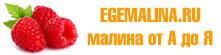 О малине Гордость России ремонтантной: описание сорта, особенности по уходу