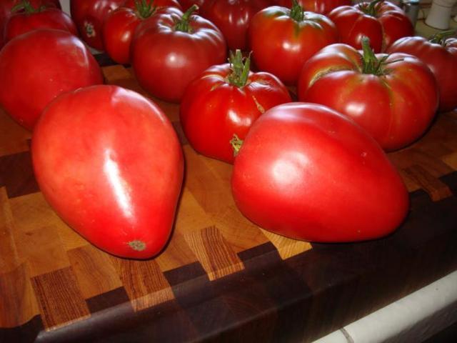 Кардинал: описание сорта томата, характеристики помидоров, посев