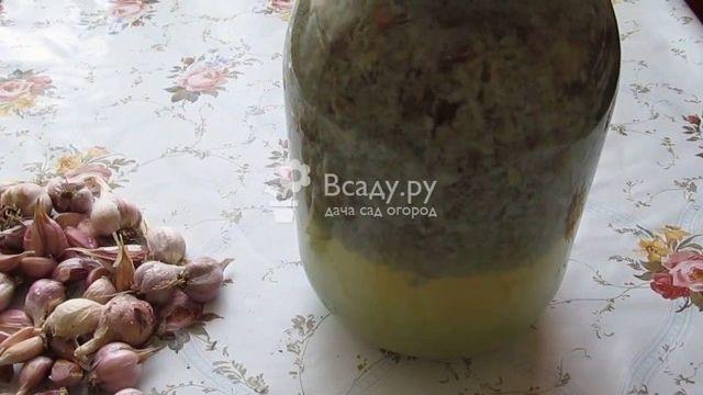 Все о применении шелухи от чеснока как удобрения и средства от вредителей