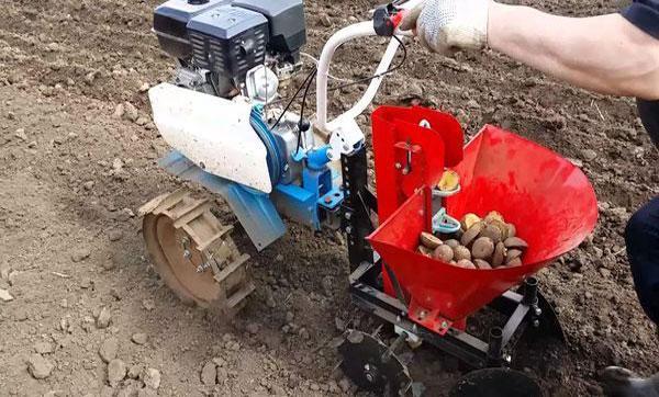 Как сажать картофель мотоблоком, как использовать картофелесажалку