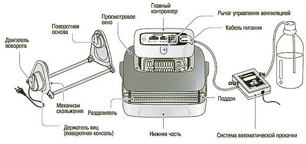 Об инкубаторе Золушка: инструкция пользователя, регулировка влажности, ремонт