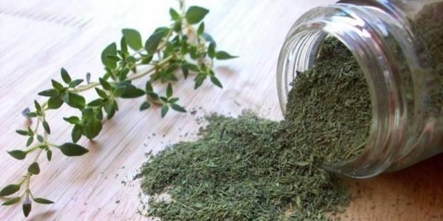 Все о тимьяне: что за трава, это чабрец или нет, использование в лечебных целях