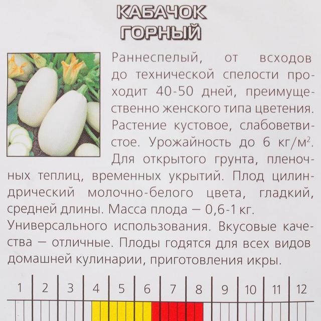 Все о сорте кабачка Белоплодный горный: описание, особенности выращивания