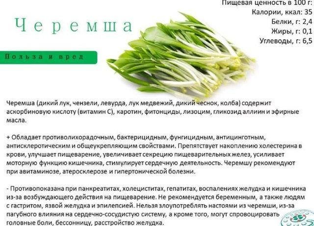 Все о месте произрастания черемши, места на карте России