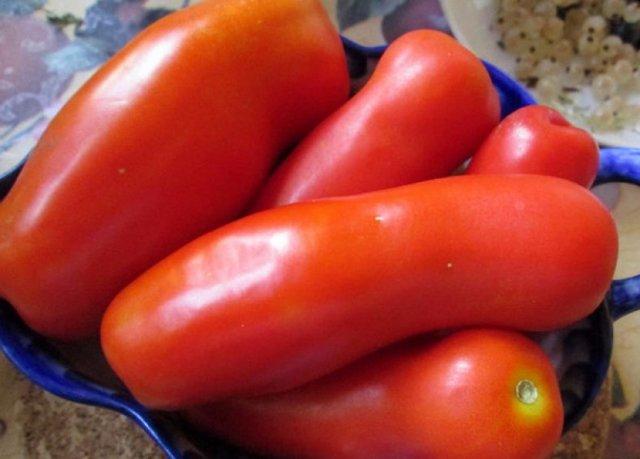 Жигало: описание сорта томата, характеристики помидоров, посев
