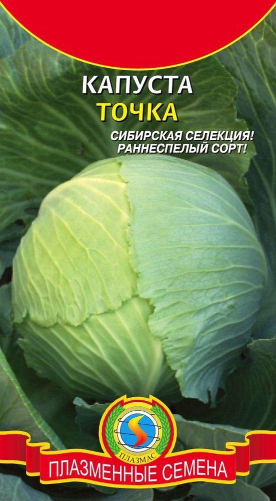 О капусте Точка: описание и характеристика раннего, белокочанного сорта