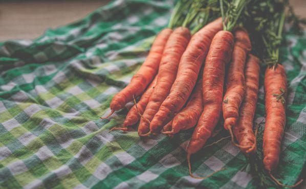 Как подготовить семена моркови к посеву в открытый грунт весной