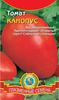 О томате Канопус: описание сорта, характеристики помидоров, посев