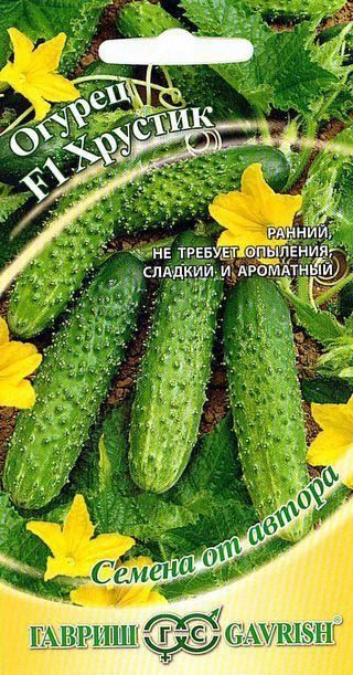 Об огурце Хрустик: описание и характеристики сорта, посадка и уход