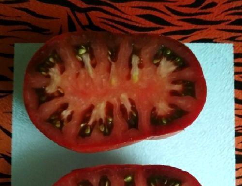 Тигровый: описание сорта томата, характеристики помидоров, выращивание