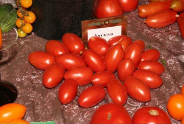 Хохлома: описание сорта томата, характеристики помидоров, посев