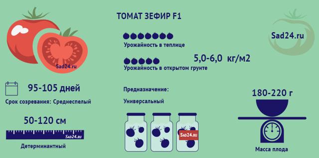 О томате Зефир в шоколаде: описание сорта, характеристики помидоров, посев