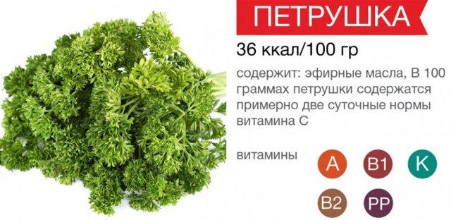 Почему введен запрет на петрушку кудрявую в России: наркосодержащее растение