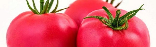 О томате Pink Paradise: описание и характеристики сорта, уход и выращивание