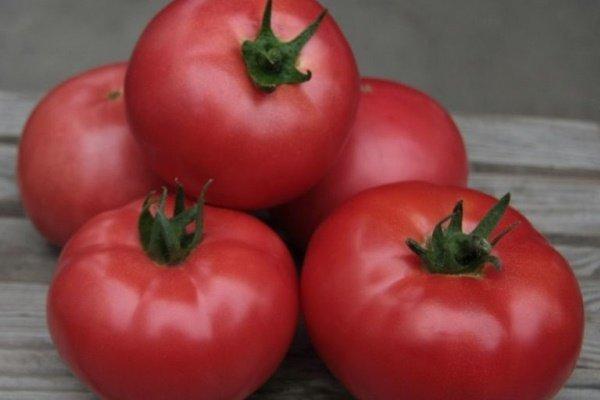О лучших сортах помидор: названия, характеристики и описания сортов