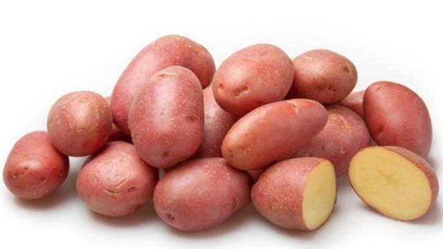 Беллароза: описание семенного сорта картофеля, характеристики