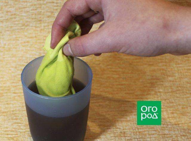 Выращивание огурцов в пластиковых пятилитровых бутылках: как посадить и вырастить