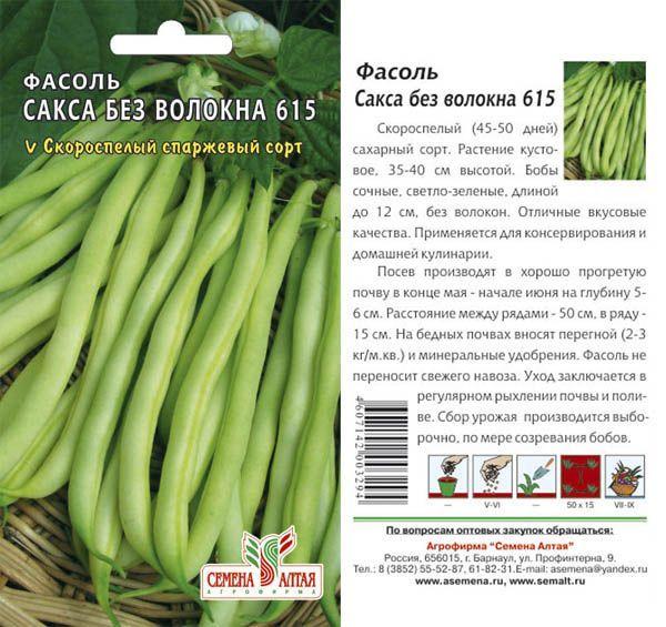 О фасоли Сакса: описание и характеристики сорта, посадка и выращивание