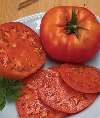 Хлебосольный: описание сорта томата, характеристики помидоров, посев