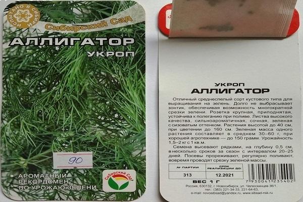 Все о сорте укропа Аллигатор: посадка и уход, особенности выращивания
