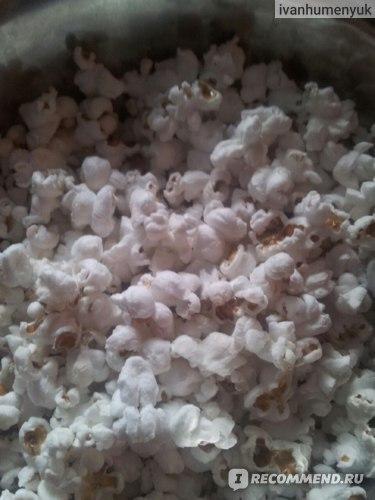 О кукурузе для попкорна: условия для выращивания, правила ухода за сортовой культурой