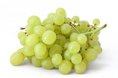 Описание сортов винограда Кеша, сравнение характеристик Кеша 1 и Кеша 2, особенности