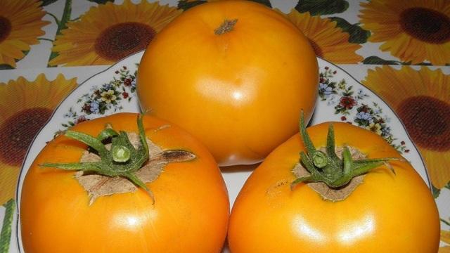 Апельсин: описание сорта томата, характеристики помидоров, посев