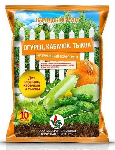 О посадке тыквы и кабачков семенами в открытый грунт: условия для посева