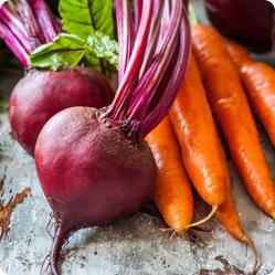Все о семенах салата для посева в открытом грунте: лучшие сорта