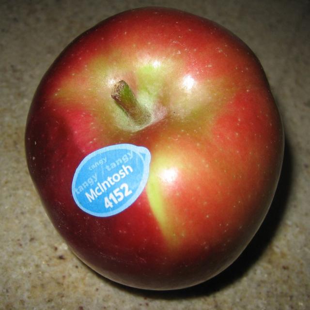 О яблоне Макинтош: описание сорта, характеристики, агротехника выращивания