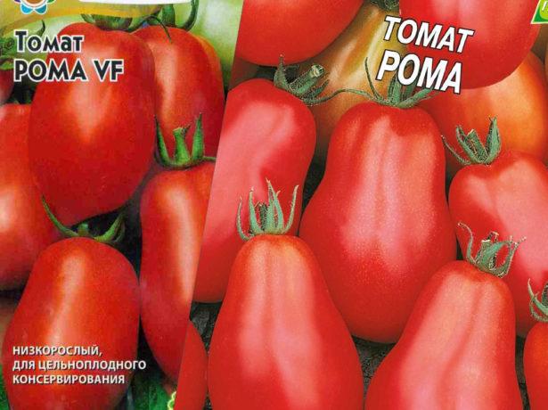 Рома: описание сорта томата, характеристики помидоров, выращивание