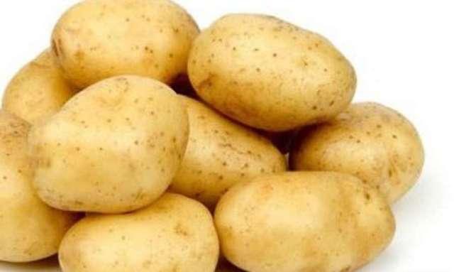 Лина: описание семенного сорта картофеля, характеристики, агротехника