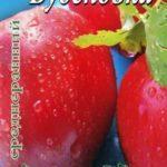 О томате Буденовка: описание и характеристики сорта, уход и выращивание