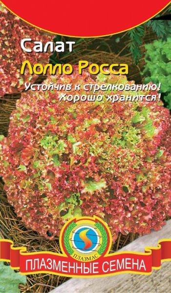 Все о высаживании салата Лолло Росса: описание, как сажать и выращивать