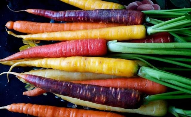 Как правильно сажать морковь семенами весной, как прореживать и выращивать