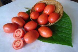 О томате Дворцовый: описание сорта, характеристики помидоров, посев