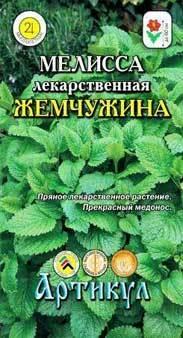 Все о посадке мелиссы: правила ухода за растением в открытом грунте