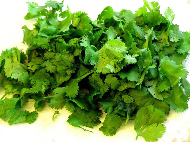 Все о кориандре: как выглядит, другое название, полезные свойства, витамины
