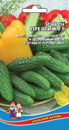 Об огурце Престиж: описание сорта, характеристики, технология выращивания