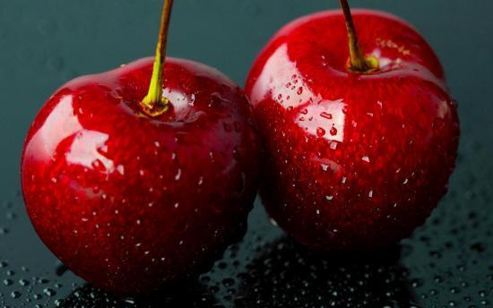 О вишне Прима: описание и характеристики сорта, уход и выращивание