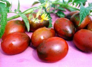 Де Барао: описание сорта томата, характеристики помидоров, посев